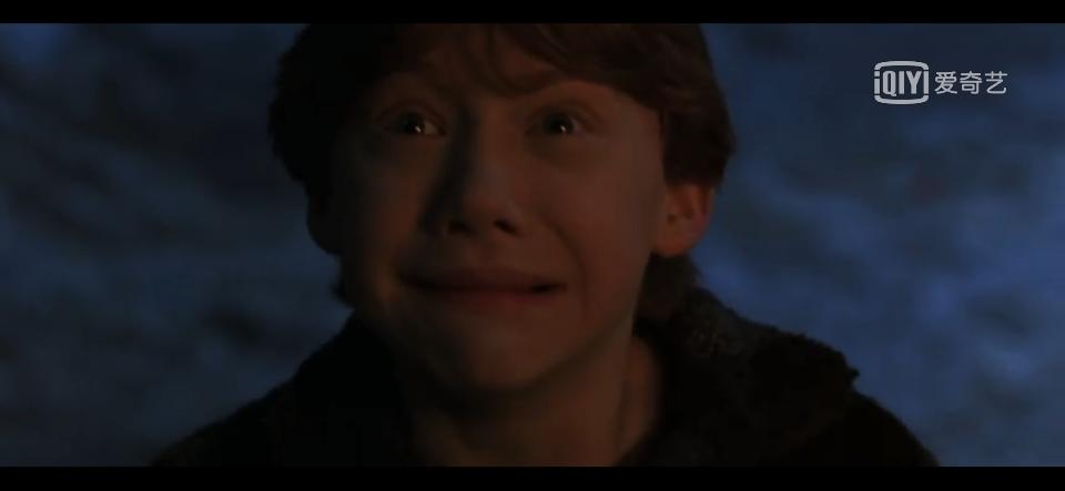 说说《哈利波特》里哪个情节最感动你吧?