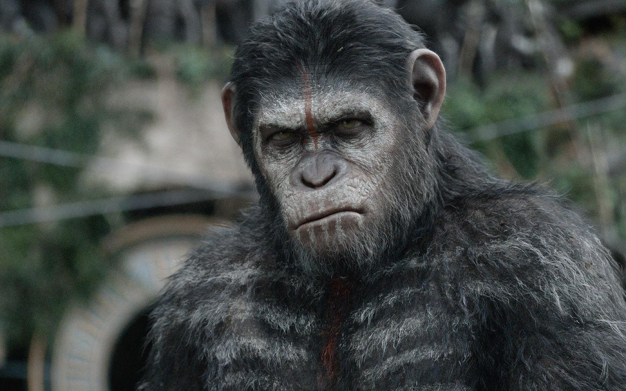 《猩球崛起》系列播出这么多季,你最大的感触是什么呢?